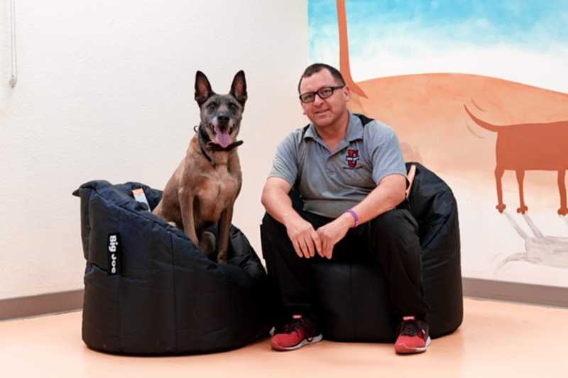 Tuscon dog trainer near me